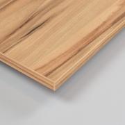 Dekorholz Kernapfel - Holzzuschnitt